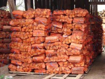 Sack (20Kg) Brennholz
